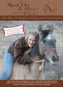 Reach Out To Horses DVD Vol 6