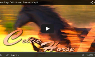 The Celtic Horse and Celtic Horsemanship