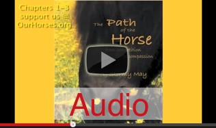 Path Of The Horse Audiobook Chapters 1-3