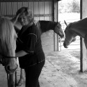 Incorporating The Herd Into Equine Massage Therapy