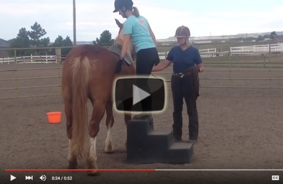 Preparation-for-mounting-a-nervous-horse