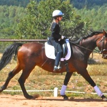 Sweetie tense canter